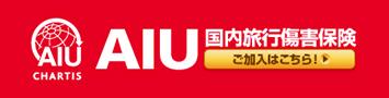 AIUの国内旅行傷害保険